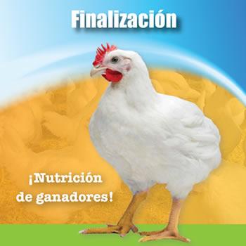 Pollo SOW Fase-III