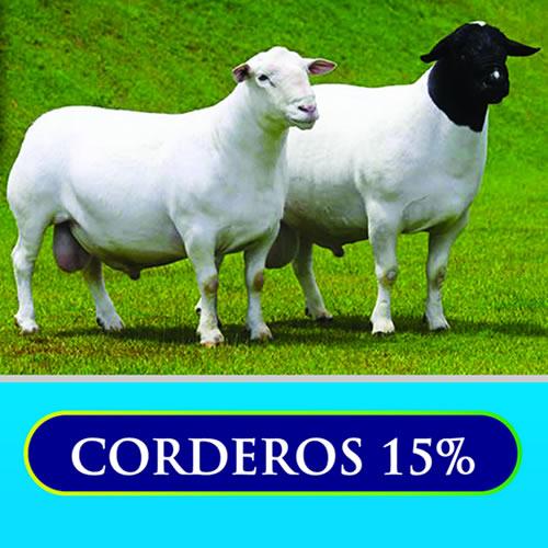 Corderos 15%