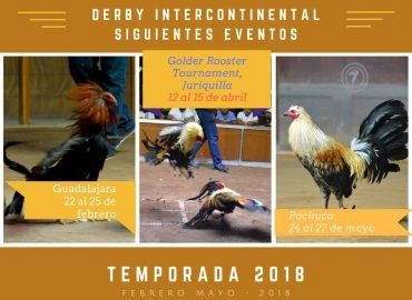 Derby Internacional Golder Rooster 2018